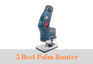 How to Choose the Best Palm Router for You In 2020 and Reviews