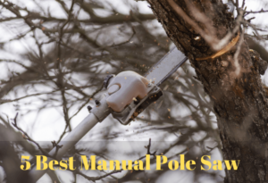 How to Choose the Best Manual Pole Saw for You In 2020 and Reviews