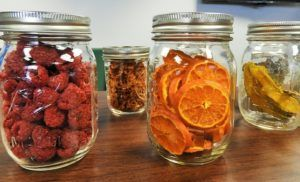 How to Choose the Best Buy Dehydrator for You In 2020 and Reviews